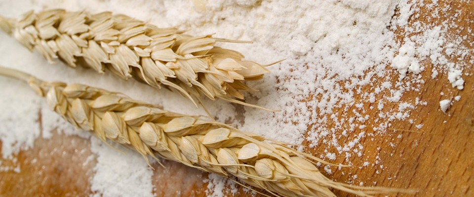 Flour and Wheat